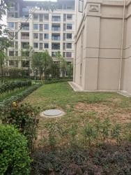关于小区内一楼房屋边绿化地带的使用权