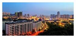 滨江新城随拍-手机