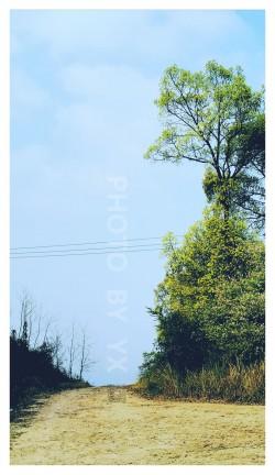 圣泉公园-风景-荣耀20PRO-A